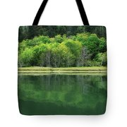 Twilight Glow Tote Bag