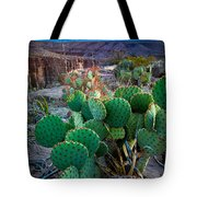 Twilight Prickly Pear Tote Bag