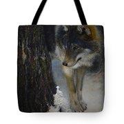 Twilight's Preyer  Tote Bag