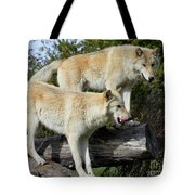 Twin Blond Wolves Tote Bag