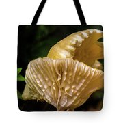 Twin Cantharellus Tote Bag