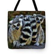 Twin Lemurs Tote Bag