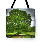 Twin Oaks Drive Southern Living Tote Bag