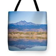 Twin Peaks Reflection Tote Bag