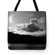 Twin Sons Tote Bag