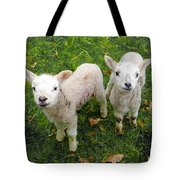 Twins - Spring Lambs Tote Bag