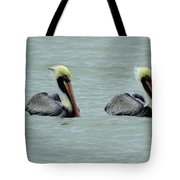 Twins Brown Pelican In Gulf Of Mexico Tote Bag