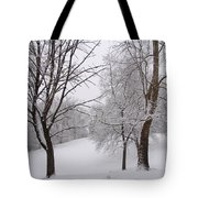 Twins Trees In The Snow Tote Bag