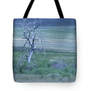 Twisted And Free Tote Bag