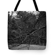 Twisted And Wet Tote Bag