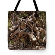 Twisted Around A Rock Tote Bag