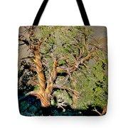 Twisted Bristlecone Tote Bag