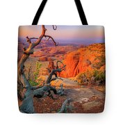 Twisted Remnant Tote Bag