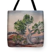 Twisted Temptest Tote Bag