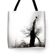 Twisted Tree With Snow Crow Tote Bag