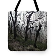 Twisted Woods Tote Bag