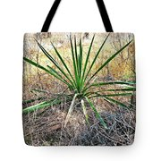 Twisted Yucca Tote Bag