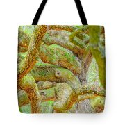 Twists In Time Tote Bag