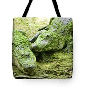 Two Alligators Tote Bag by Garry Gay