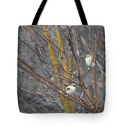 Two American Goldfinch Tote Bag