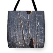 Two Bears Up A Tree Tote Bag