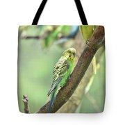 Two Beautiful Yellow Parakeets In A Tree Tote Bag
