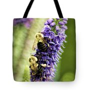 Salvia With Bees Tote Bag