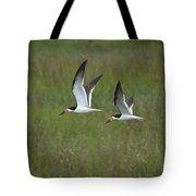 two Black Skimmers in flight Tote Bag