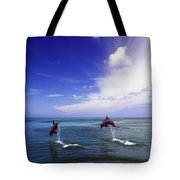 Two Bottlenose Dolphins Tote Bag