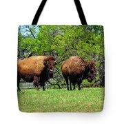Two Buffalo Standing Tote Bag