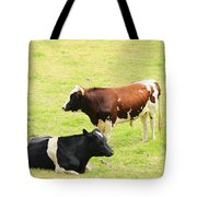 Two Bulls In A Pasture Tote Bag