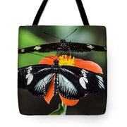 Two Butterflies-one Flower Tote Bag