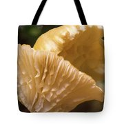 Two Cantharellus Tote Bag