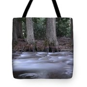 Two Ceders Next To A Mountain Stream Tote Bag