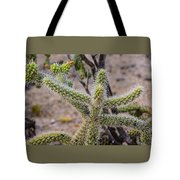 Two Cholla Friends Tote Bag