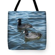 Two Coots Tote Bag