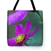 Two Cosmos Tote Bag