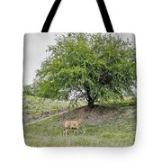 Two Cows And A Tree Tote Bag