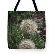 Two Dandelions, Tote Bag