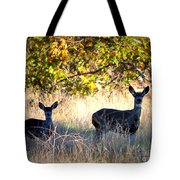 Two Deer In Autumn Meadow Tote Bag
