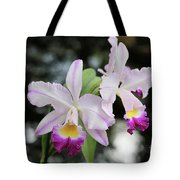 Two Delicate Orchids Tote Bag