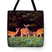 Two Doe And One Buck Tote Bag