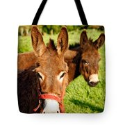Two Donkeys Tote Bag