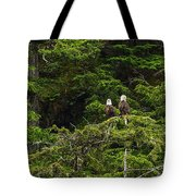 Two Eagles Perched Painterly Tote Bag