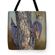 Two Flickers Tote Bag