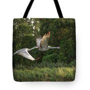 Two Florida Sandhill Cranes In Flight Tote Bag