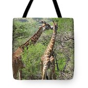 Two For One Tote Bag