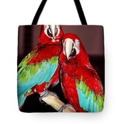 Two Friends ... Tote Bag by Juergen Weiss
