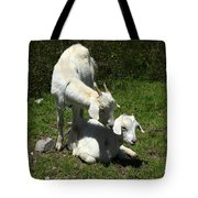 Two Goats In A Pasture Tote Bag