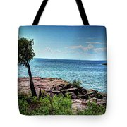 Two Harbors North Pierhead Light Tote Bag
